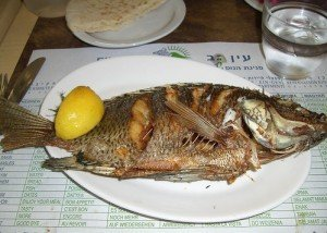 Fish_Back_RestaurantMealPrices